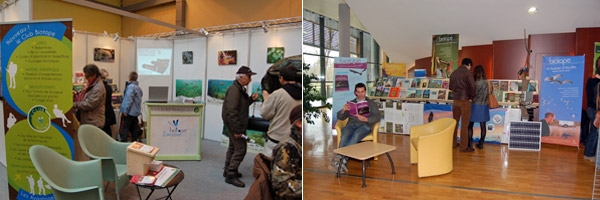 Stand Biotope sur les salons naturalistes